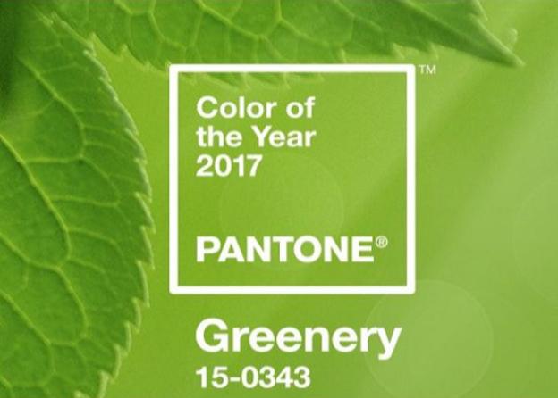 la couleur de l ann e 2017 de pantone greenery. Black Bedroom Furniture Sets. Home Design Ideas