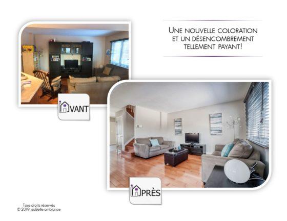 Salons salles familiales et sous-sols41_isaBelle ambiance_home staging